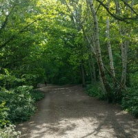 Photo taken at Parkland Walk (Crouch End to Highgate section) by Lucie M. on 4/27/2017