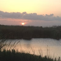 Photo taken at South Padre Island Birding & Nature Center by Robin B. on 6/18/2013