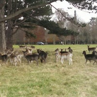 Photo taken at Phoenix Park Castleknock Gate by Anton D. on 11/27/2016