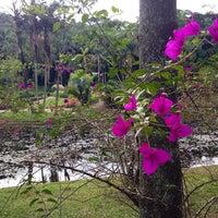 Photo taken at Jardim Botânico de São Paulo by Mariane P. on 6/1/2014