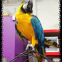 Photo taken at PetSmart by Gerardo V. on 8/27/2013
