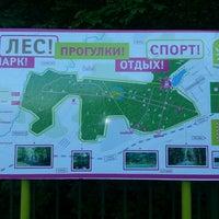Das Foto wurde bei Мещерский парк von Irina S. am 5/19/2013 aufgenommen