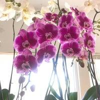 Photo taken at Victoria Flower Studio by Zuri Z. on 3/12/2018