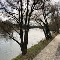 Photo taken at Donau by Casi on 3/30/2018