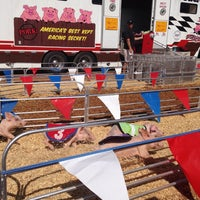 Photo taken at Swifty Swine Racing Pigs by Katie on 6/24/2014