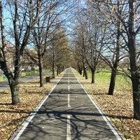 Das Foto wurde bei Парк «Борисовские пруды» von Yury M. am 10/13/2013 aufgenommen