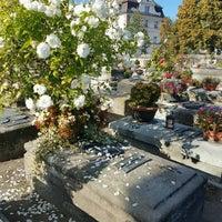 10/16/2016에 Natalia A.님이 Johannis-Friedhof에서 찍은 사진