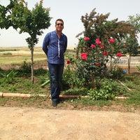 Photo taken at Şarklı Çiftliiği by Hasan S. on 8/4/2013