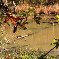 Photo taken at Lake Conestee Nature Park by Stephen H. on 10/20/2013