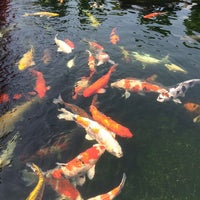 Photo taken at Tùng Sơn Thạch Hoa Viên - Rin Rin Park by Huyen L. on 10/4/2014