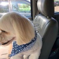 Photo taken at Shawnee Hills Pet Grooming by Julie W. on 5/9/2018