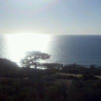 Photo taken at Torrey Pines State Natural Reserve by Rachel W. on 11/11/2012