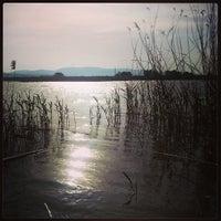 5/1/2013 tarihinde Hasan Ç.ziyaretçi tarafından Büyükçekmece Gölü'de çekilen fotoğraf