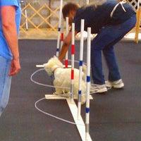 Photo taken at Nashville Dog Training Club by Cindy L. on 5/22/2012