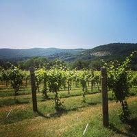 Photo taken at Pollak Vineyards by Laura C. on 6/8/2013