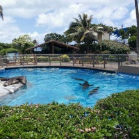 Photo taken at sea life park by Allen M. on 6/29/2013