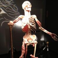 5/29/2013 tarihinde Manuel C.ziyaretçi tarafından BODIES...The Exhibition'de çekilen fotoğraf