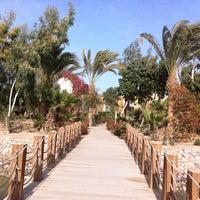 Photo taken at Sheraton Miramar Resort El Gouna by Tatiana M. on 3/1/2013
