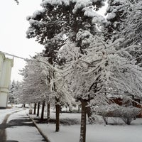 Photo taken at Nalchik by Valery T. on 12/8/2017