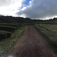 Photo taken at Chá Gorreana by Brian S. on 2/21/2017