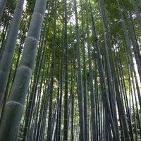 Photo taken at 竹の庭 by _ay07 on 11/27/2013