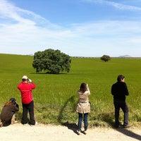 Photo taken at Bodega Palacio Quemado by Ruta del Vino R. on 4/20/2013
