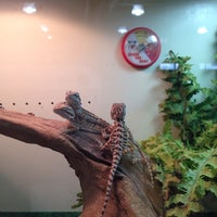 Photo taken at Uncle Bill's Pet Centers West by Candis O. on 3/12/2014
