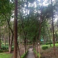 Photo taken at Parque Luis G. Urbina (Parque Hundido) by CYNTHIA M. on 7/27/2013