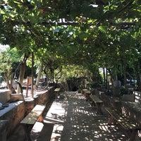 Photo taken at Underground Gardens - Baldasare Forestiere by Babak V. on 8/13/2017