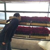 Photo taken at Rosemont Pavilion - Pasadena Tournament Of Roses Association® by Alfonso C. on 12/28/2014