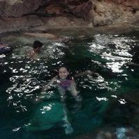 Das Foto wurde bei Cenote San Ignacio von JOy L. am 3/29/2013 aufgenommen