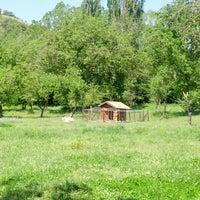 5/26/2013 tarihinde Ceki P.ziyaretçi tarafından Şadibey Çiftliği'de çekilen fotoğraf