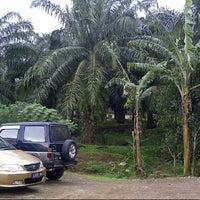 Photo taken at Perkebunan Kelapa Sawit, Bogor by Nopita S. on 3/3/2013