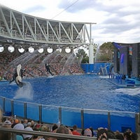 Photo taken at SeaWorld Orlando by Marcelo O. on 3/11/2013