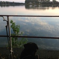Photo taken at Dikkebusvijver by Sara P. on 8/8/2013