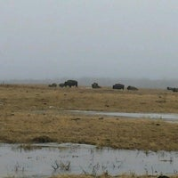 Photo taken at Elk Island National Park by Sybaristail on 3/30/2017