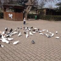 3/6/2015 tarihinde Hülya İ.ziyaretçi tarafından Club K9'de çekilen fotoğraf