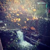12/2/2012 tarihinde Mehmet A.ziyaretçi tarafından Maşukiye Saklıbahçe'de çekilen fotoğraf