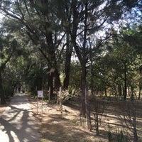 Photo taken at Zona Forestal Lomas de Zapopan by Iván S. on 4/3/2016