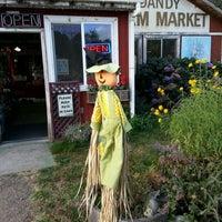 Photo taken at Jim Dandy Farm Market by alexander p. on 10/2/2012