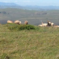 Photo taken at Point Reyes National Seashore by Joan K. on 4/15/2013