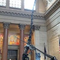 รูปภาพถ่ายที่ American Museum of Natural History Museum Shop โดย Adnaloy L. เมื่อ 7/22/2018