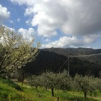 Photo taken at Bettona by Giacomo C. on 4/6/2013