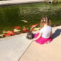 Photo taken at The Koi Pond by Lori K. on 5/16/2014
