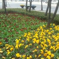 Photo taken at 안양시청사거리 by 병렬 최. on 4/4/2013