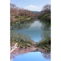 Photo taken at 鹿野城跡公園 by Tadashi I. on 4/2/2015