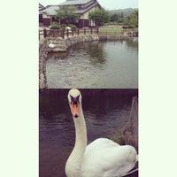 Photo taken at 鹿野城跡公園 by Tadashi I. on 8/5/2014