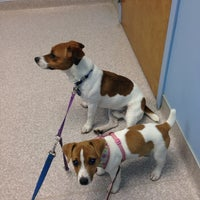 Photo taken at Covedale Pet Hospital by Rev B. on 10/7/2013