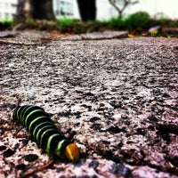 Photo taken at Avenida Ermano Marchetti by Fagner C. on 9/26/2012