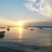 5/25/2014 tarihinde Naz B.ziyaretçi tarafından Güzelyalı Sahili'de çekilen fotoğraf